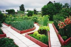 Садовые бордюры, наоборот, могут быть различных цветов