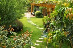 Садовая тропинка