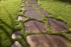 Дорожка из натурального камня с рядным способом укладки