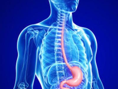 Принято считать, что пищевод Барретта - это предраковое заболевание, поскольку оно характеризуется присутствием метаплазированного эпителия слизистой пищевода