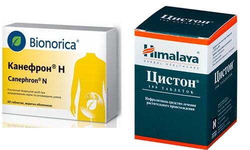 Канефрон и Цистон являются препаратами, применяемыми для лечения заболеваний мочевыделительной системы