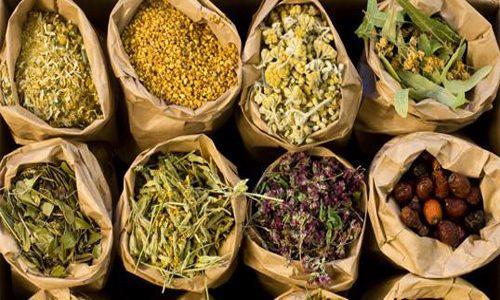 Наряду с искусственно синтезируемыми лекарствами травы для поджелудочной железы помогают восстановить здоровье органа и улучшить его функционирование при разных заболеваниях