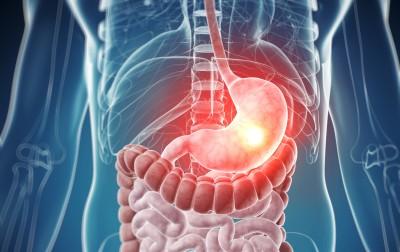 Неправильное питание, перекусы на бегу или обильная пища на ночь - все это может привести к тому, что желудок не переваривает пищу