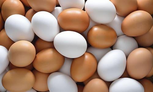 Употребление яиц при воспалении поджелудочной железы может быть как полезно, так и вредно