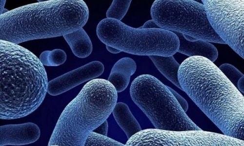 Спринцевание с помощью раствора боровой матки поможет уничтожить бактерии на наружных половых органах