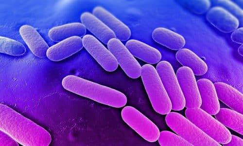 Если болезнь провоцируют бактерии (уреаплазмы, трихомонады и др.), то в исследуемом биоматериале выявляются патогенные микроорганизмы