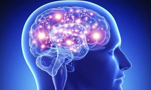 Применение Кавинтона и Мексидола вместе благотворно влияет на обменные процессы в мозговых клетках