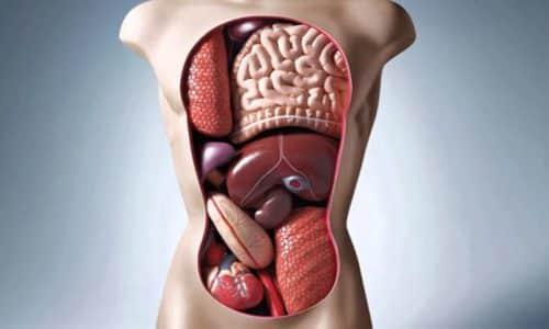На диарею может влиять состояние слизистой органов ЖКТ