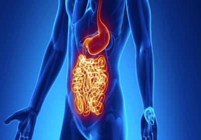 Эрозивный бульбит это одна из разновидностей дуоденита, который является болезнью желудочно-кишечного тракта