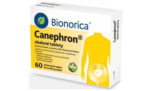 Канефрон можно использовать для лечения хронических заболеваний, имеющих неинфекционную природу, в т.ч. интерстициального нефрита и гломерулонефрита