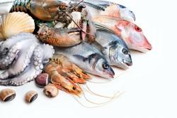 Польза морепродуктов после удаления щитовидки