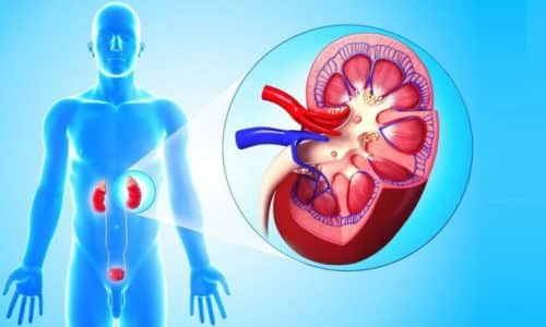 Боль во время мочеиспускания может вызвать пиелонефрит