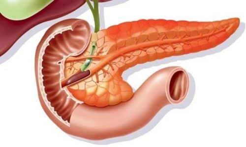 Если поджелудочная железа вырабатывает больше или меньше гормонов и пищеварительных ферментов, чем всегда, это свидетельствует о дисфункции органа