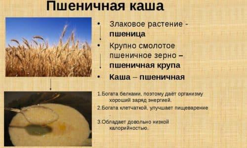 Ценность пшенной каши при панкреатите обусловлена составом крупы. В ней содержится достаточное количество витаминов и клетчатки