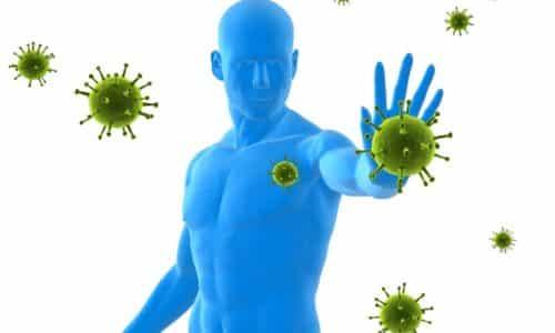 Развивающаяся в организме инфекция воздействует на работу иммунитета