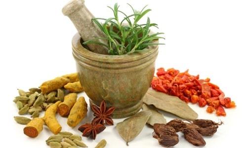 Применение лекарственных трав при холецистите и панкреатите не должно становиться самостоятельным способом лечения