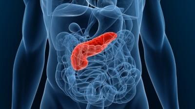 Очень важна диета при панкреатите, поскольку справиться с нарушением функционирования поджелудочной железы с помощью одних лишь медикаментов может оказаться сложной задачей, зачастую просто невозможной