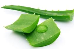 Сок из листьев алое при лечении запоров у детей