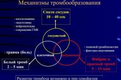 Механизмы тромбообразования