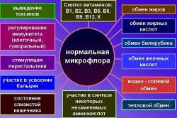 Роль полезной микрофлоры кишечника