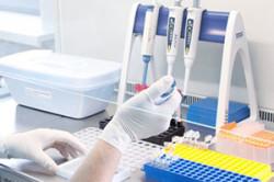 Проведение анализа ИФА в лаборатории