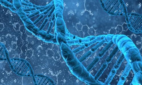 Обнаружение фрагментов ДНК в слюне, осадке мочи, плазме и выделениях свидетельствует о том, что человек является носителем вируса