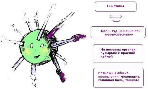 Симптомы вируса герпеса