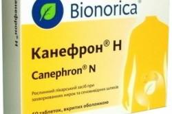 Применение канефрона при цистите у детей