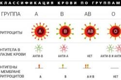 Классификация крови по группам