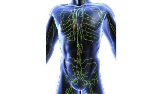 При первичной лимфоме в зоне поражения оказываются ткани нервной системы расположенные в непосредственной близости к лимфоузлу, подвергшемуся влиянию возбудителя