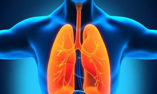Проблема диссеминированного туберкулеза